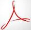 Adobe Acrobat Pro DC 2019 绿色版