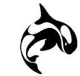 Orca3D 2.0 for Rhino6  - 犀牛船坞设计插件