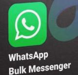 Business Sender 10.0 破解版 - whatsapp信息群发工具