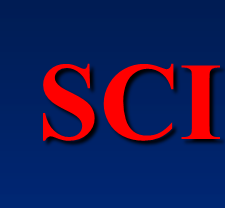 SCI讲座经典大拿教你如何撰写SCI论文PPT课件