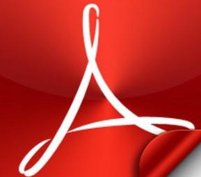Acrobat Pro 8.1.2